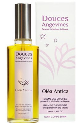 Douces Angevines Olea antica